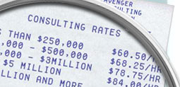 Techie Avenger Consulting Rates